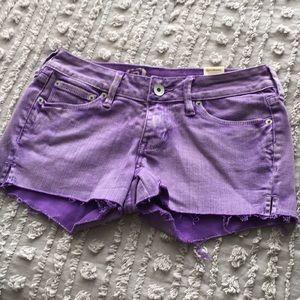 NWT Bullhead purple denim cutoff shorts sz 3